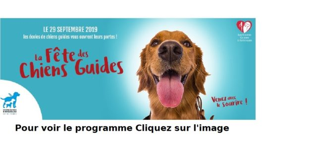 CHIENS D'AVEUGLE